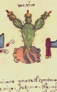 CodexOsunaCactus