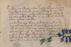 Folio10rThumb2