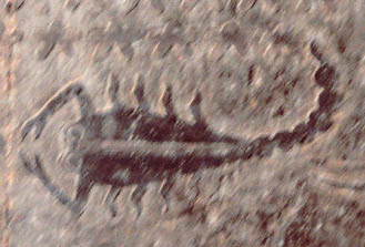 EsnehScorpio