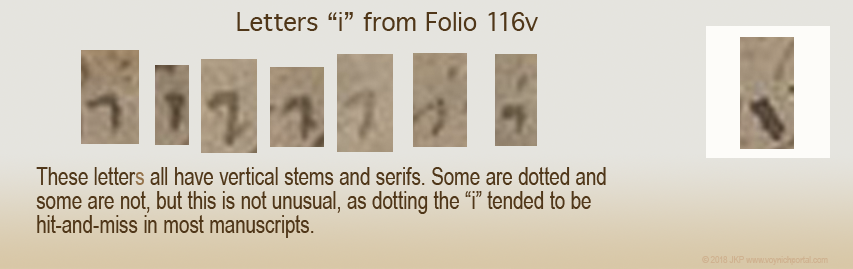 pic of the i letters of f116v