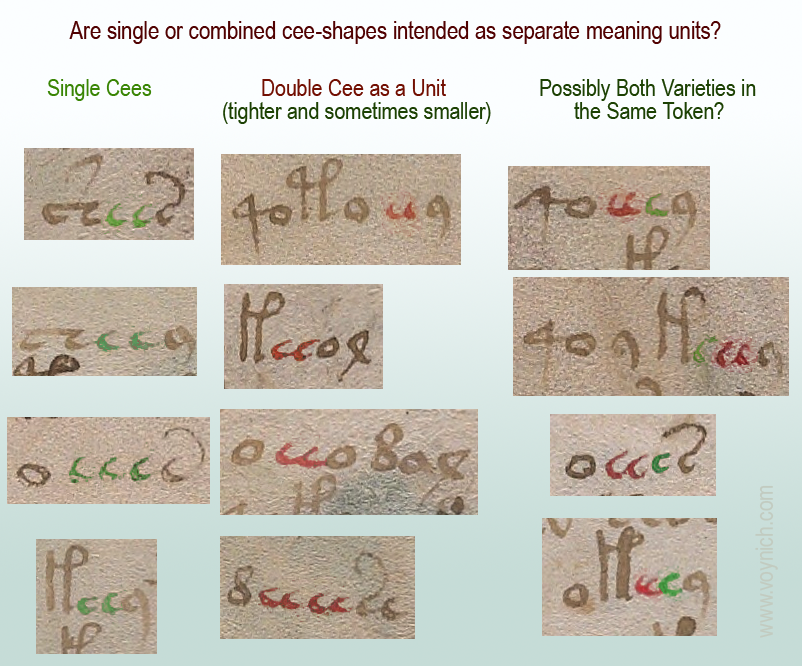 Examples of cee shapes in Voynich Manuscript text