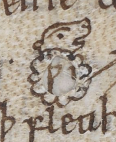"""Flawed parchment turned into """"holy"""" lamb."""